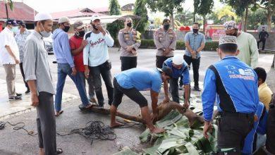 Proses penyembelihan hewan kurban di Polres Karimun